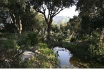 Il giardino delle sette meraviglie: La Mortella di Forio