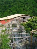 Agriturismo Pera di Basso Ischia