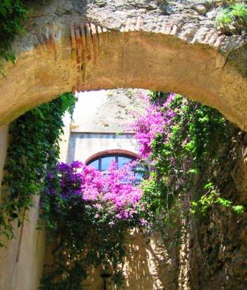 La flora mediterranea del Castello Aragonese di Ischia