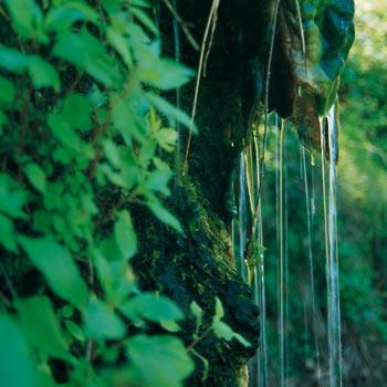 Dove Bergsoe trovò la cura dei suoi mali: la sorgente termale La Rita