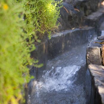 le acque termali ed il territorio di Ischia
