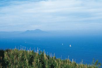 Piano Liguori: tra le viti l'azzurro del mare