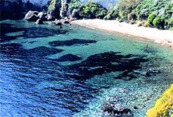 La spiaggia delle monache a Lacco Ameno