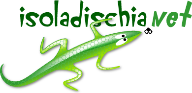 isoladischia.net
