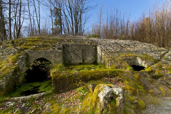 Il bosco della Falanga, tra case rupestri e antichi palmenti